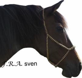 Sven weidehalster