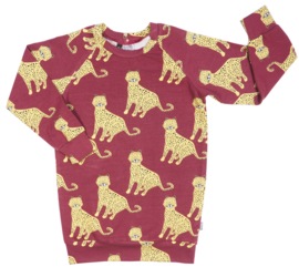 Kleine Baasjes Organic - Sweater Dress Leopard Wine