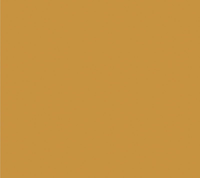 Dark Gold - Jersey