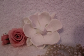 Geursteen magnolia