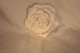 Geursteen roos