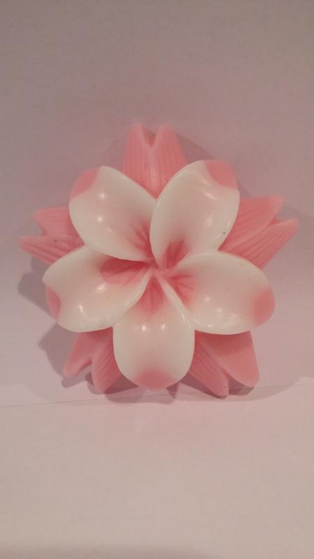 Lotusbloem in twee kleuren. Bedankt dat je er was!