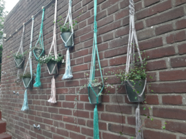 Workshop Macramé Plantenhanger maken