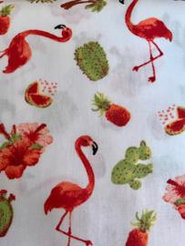 Flamingo en cactussen