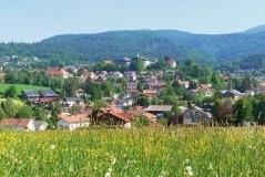 Excursiereis 8 dagen Beierse Woud All-inclusive (effeweg)
