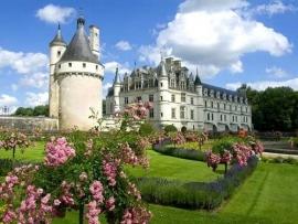 Single Reis Frankrijk - Kastelen in het Loiredal (kras)