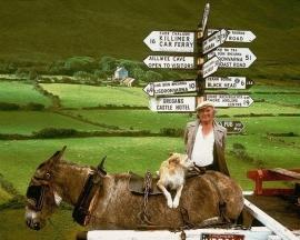 Excursiereis 11 dagen Rondreis Ierland (effeweg)
