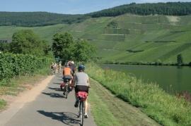 6-daagse fietsvakantie per bus Fietsen langs de Moezel en Rijn (de Jong intra)
