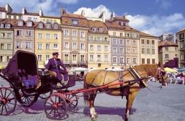 12 dagen Rondreis Polen  ( Peter Langhout )