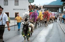 8 dagen Tirol - Brixen - Hotel Brixnerwirt  ( Peter Langhout )
