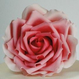 FMM Large Rose Petal Cutter uitsteker set/3