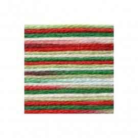 DMC Coloris 4520 Conte de Noël