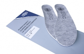 Haix insole