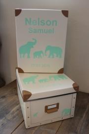 Geboorte bewaardoos olifanten
