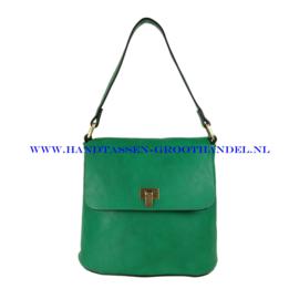N35 Handtas Mandoline 52032 groen