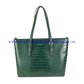 N41 Handtas Flora & Co 9527 groen
