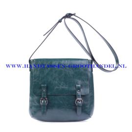 N32 Handtas Ines Delaure 1682172 pin (groen)