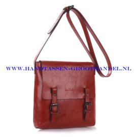N32 Handtas Ines Delaure 1682172 brique (rood - camel)