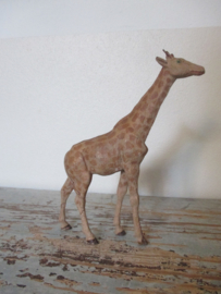 Oude giraffe ( elastolin ) SOLD