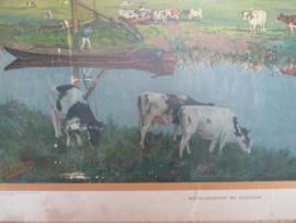 Oude schoolplaat van een weidelandschap bij Schiedam SOLD