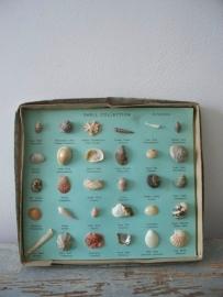 Oud doosje met schelpen SOLD