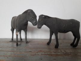 Oude ezeltjes