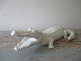 Krokodil SOLD