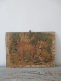 Antieke schoolplaat met de lynx SOLD