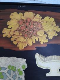 Oude botanisch schoolplaat korstmos