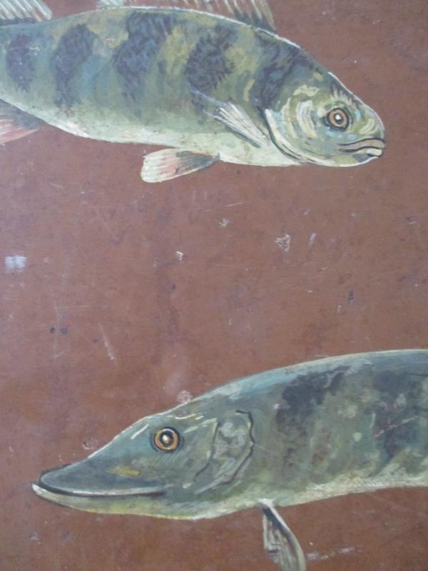 Oud kistje met vissen SOLD