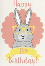 43 01401 - Luxe wenskaart verjaardag 14 jaar