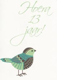43 01301 - Luxe wenskaart verjaardag 13 jaar