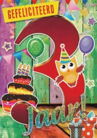 43 00302 -  Verjaardag 3 jaar