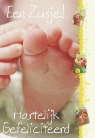 61 0006 - Geboorte zusje