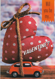 18 0102  - Valentijn