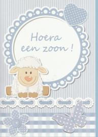 04 0016 - Luxe wenskaart geboorte zoon