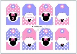 Minnie Mouse Cadeau kaartjes roze violet