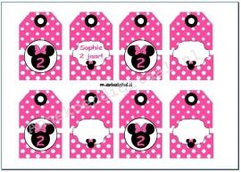 Minnie Mouse Cadeau kaartjes fuchsia