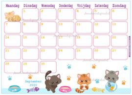 September 2020 kalender serie Dieren