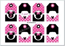 Minnie Mouse Cadeau kaartjes fuchsia en zwart