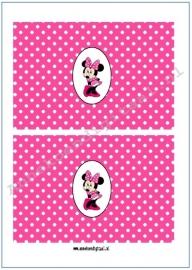 Minnie Mouse drink pakje wikkel