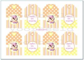 Minnie Mouse 1ste verjaardag Cadeau kaartjes
