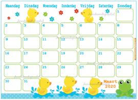 Babyshower maandkalender thema Eendje