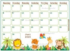 Juni 2020 kalender serie Jongens