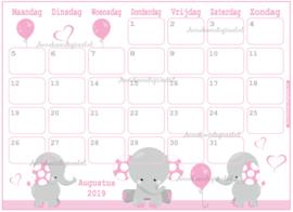Babyshower maandkalender thema Olifanten Roze