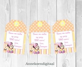 Minnie Mouse 1ste verjaardag Bedank kaartjes