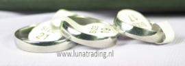 Kogel RVS ringen 30 stuks 1075