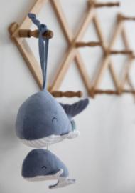 Muziekdoosje walvis blauw | Little Dutch
