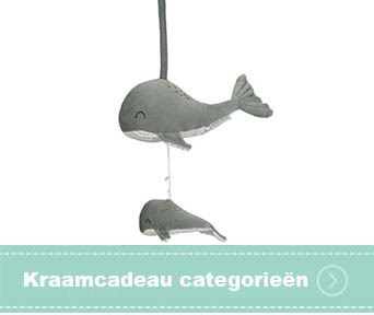 Kraamcadeau categorieen