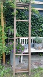 Houten school/gymzaal ladder